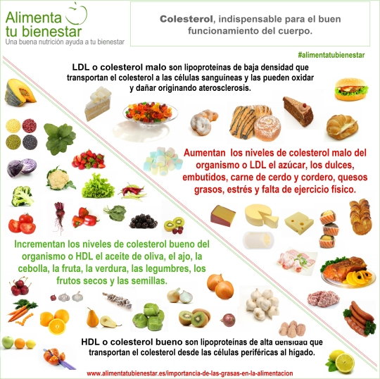 Agroa 10 alimentos para bajar el colesterol - Alimentos que provocan colesterol ...