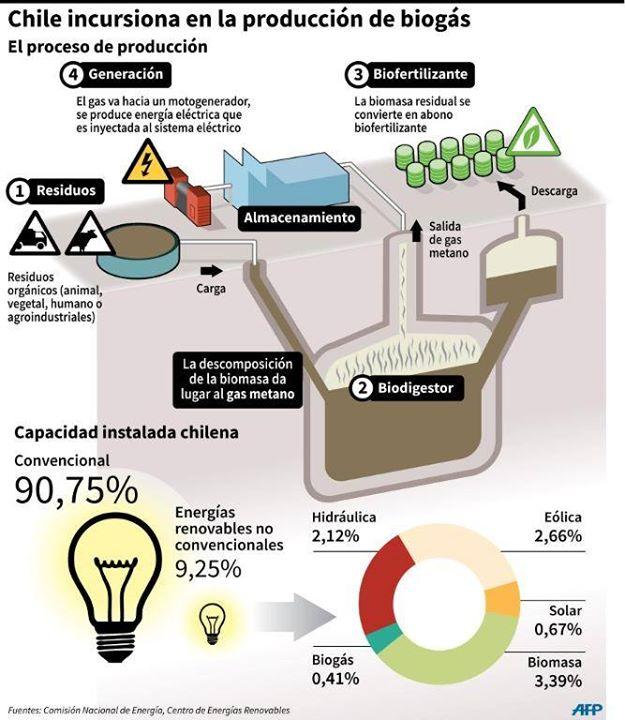 Incursi 243 N De Chile En La Producci 243 N De Biogas